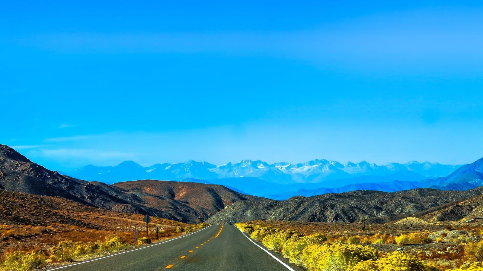 7 Great Tips for Surviving a Road Trip